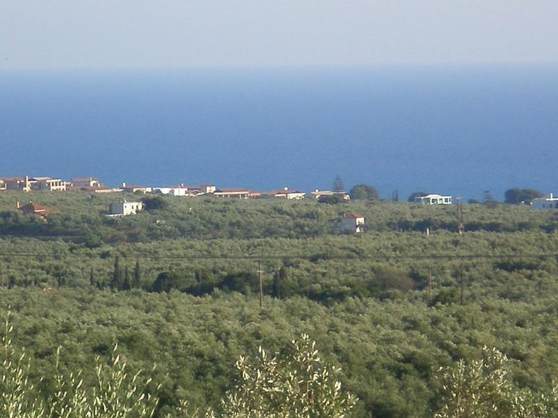 Αγροτεμαχιο Στα Κοκκινοχωραφα  Γαργαλιανων