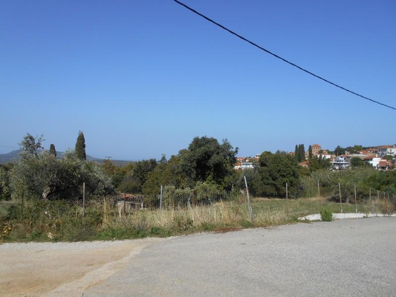 Οικόπεδο Στη Χριστιανούπολη Τριφυλίας
