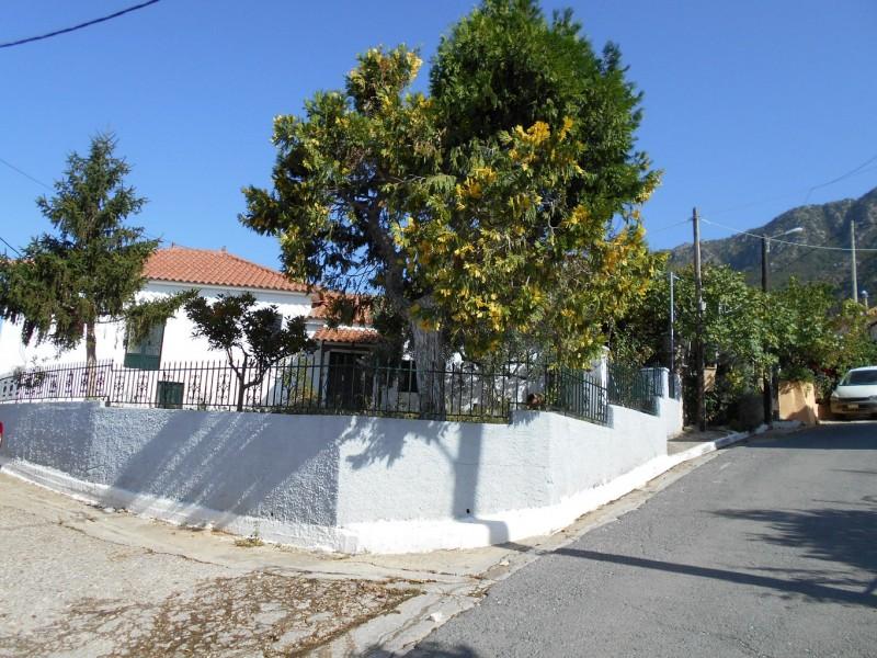 Μονοκατοικία Στη Χριστιανούπολη Τριφυλίας