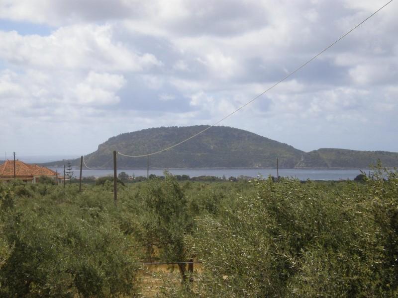 Ποτιστικό αγροτεμάχιο 17000μ² στην Μαραθόπολη